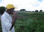 Food garden linked to ZACF-PMCP anarchist project, Motsoaledi squatter camp, Soweto, 2007 [4]